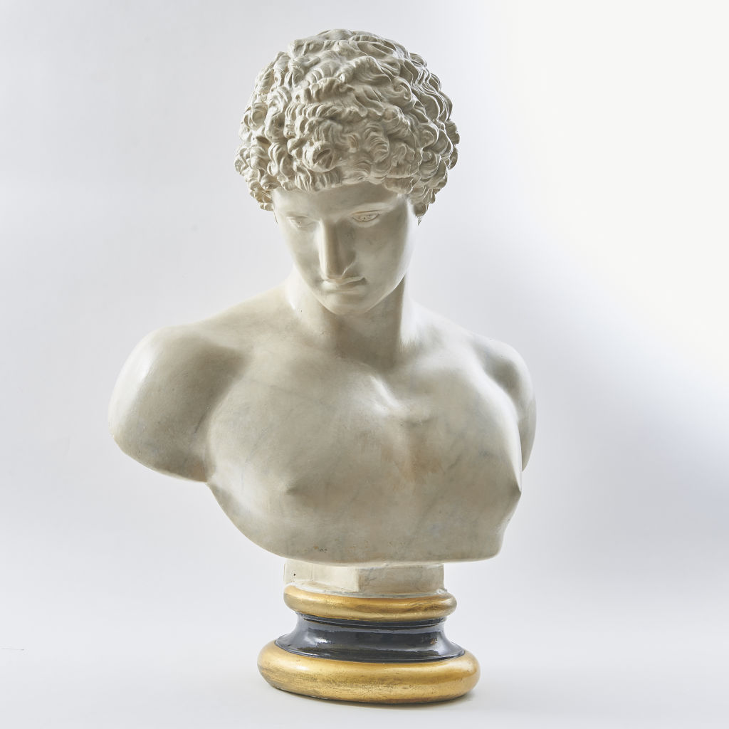 Plaster Bust of the Capitoline Antinous