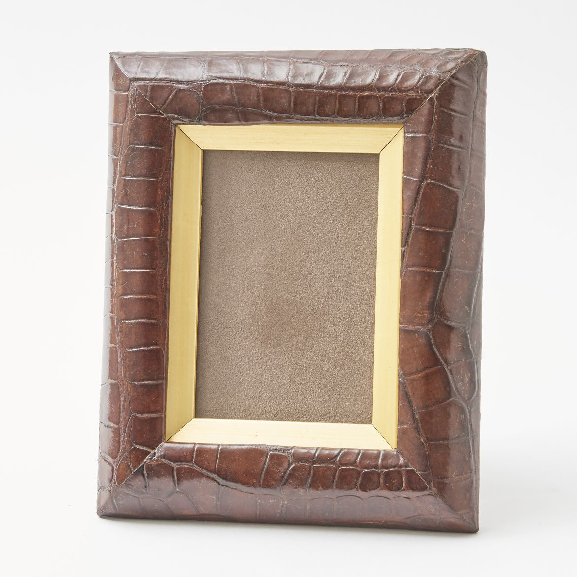 Crocodile Photo Frame