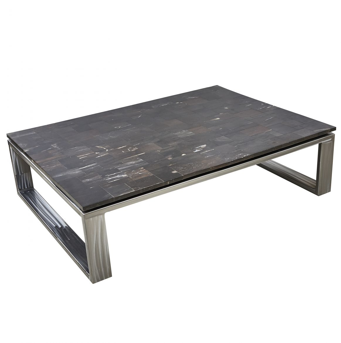 Contemporary Petrified Wood Coffee Table