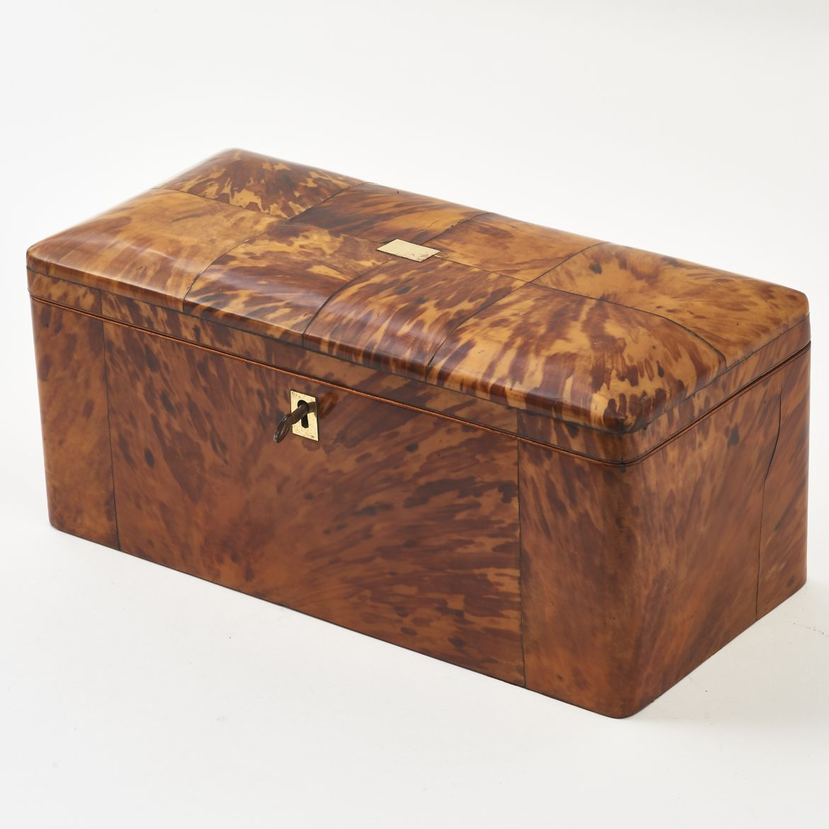 Victorian Tortoiseshell Tea Caddy
