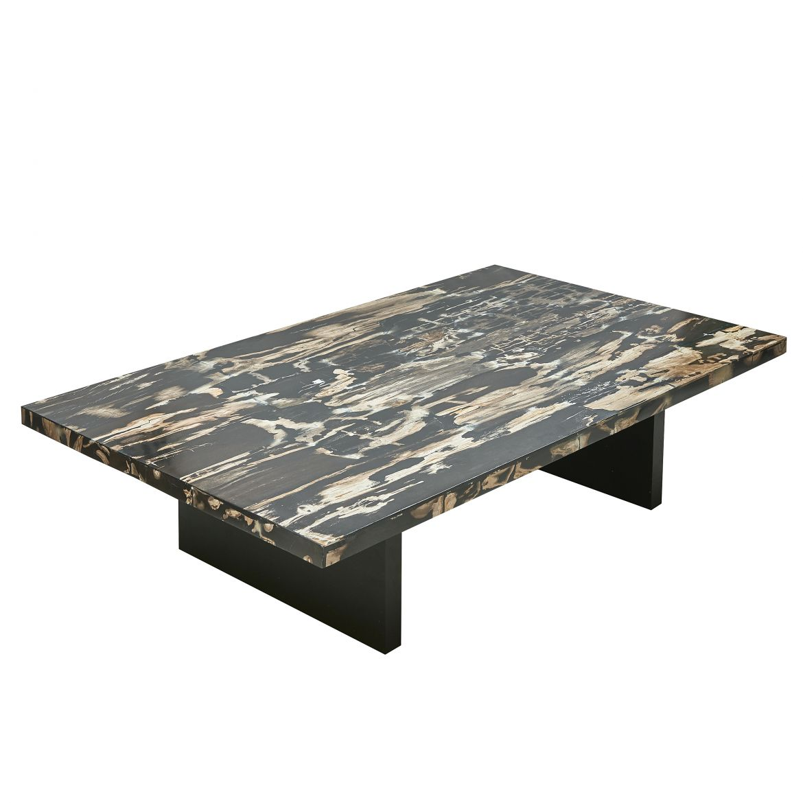 Petrified Wood Coffee Table With Ebonised Base