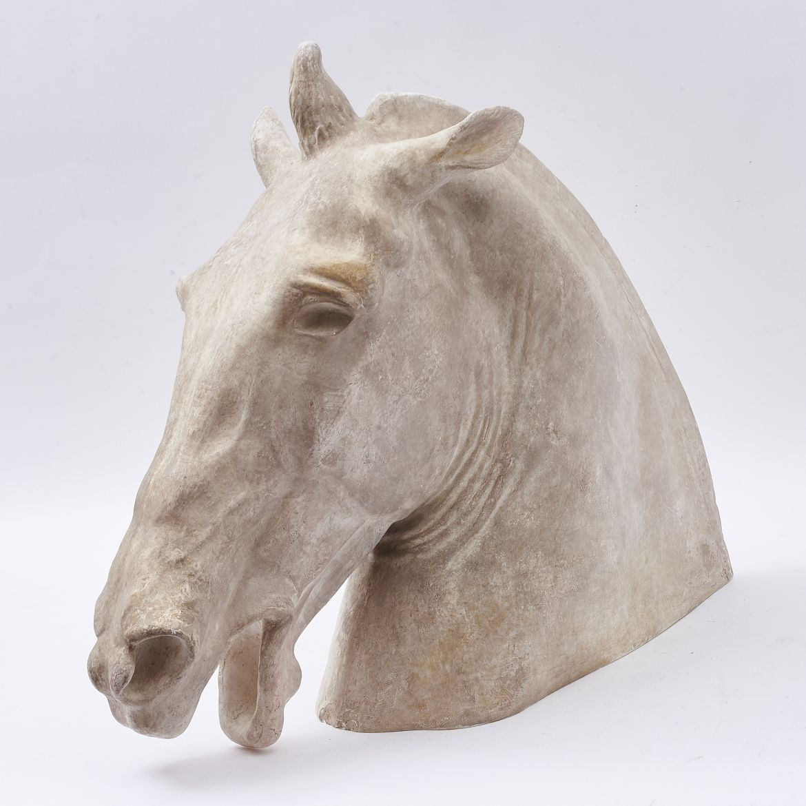 Plaster Head Of Horse of Selene