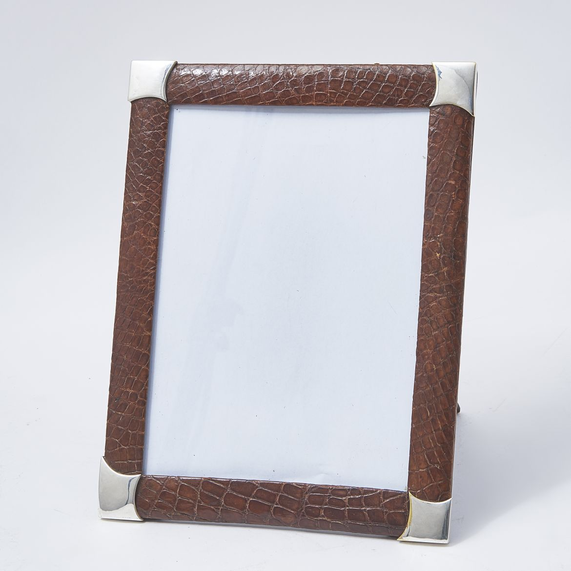 Crocodile Frame With Silver Corners